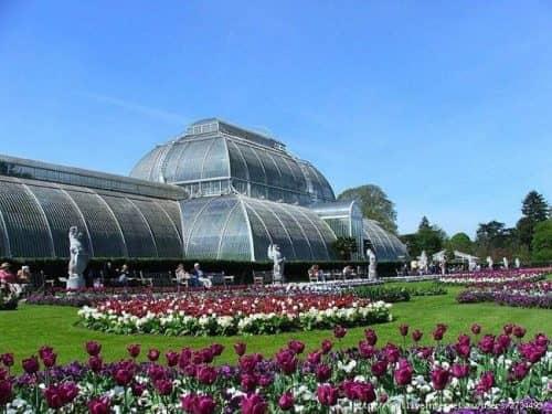 Королевский ботанический сад Кью в Лондоне