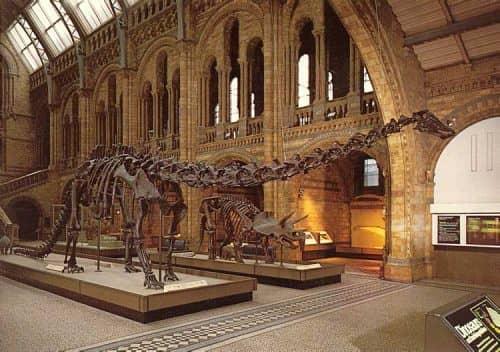 Особенности музея