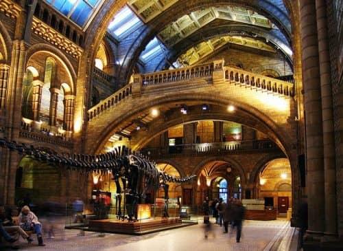 Отношение общественности к Музею Естествознания