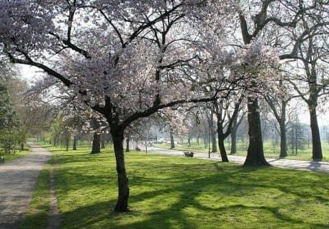 Грин парк