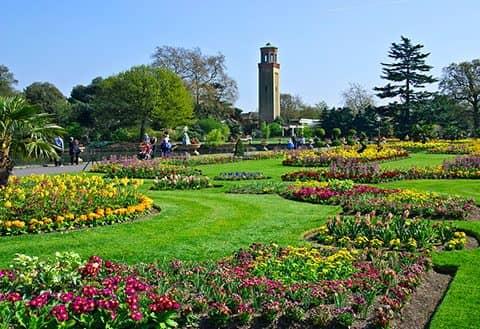 Королевские ботанические сады в Кью
